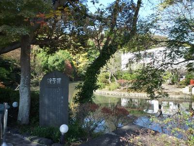 鶴岡八幡宮_20091115_03