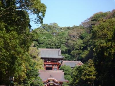 鶴岡八幡宮_20091115_05