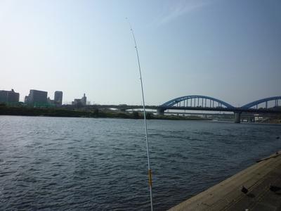 たま川_02