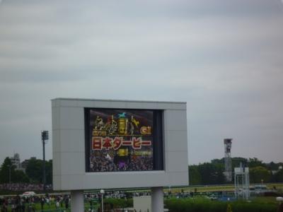 第77回_日本ダービー_06
