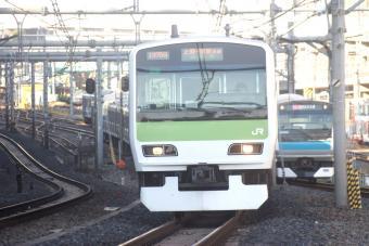 DSC00515f.jpg