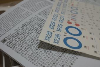 DSC02987f.jpg
