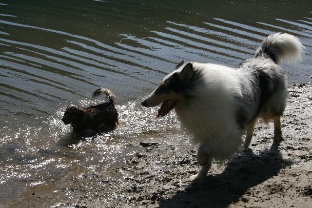 ウィンディとチャンミンの水辺デート!