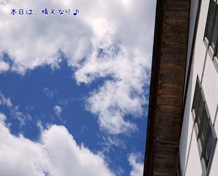G2y9C78f.jpg