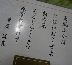 P1030709-1.jpg
