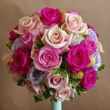 11-12-10-3_20120308185420.jpg