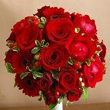 11-12-10-6_20120308185436.jpg