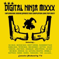 digital_ninja.jpg