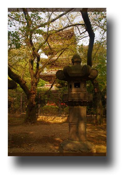 上野公園091005_edited-1