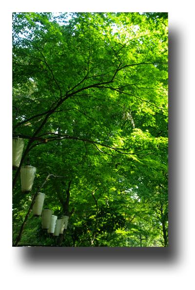 上野公園091006_edited-1