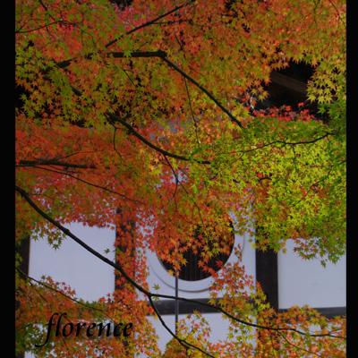 東福寺091101
