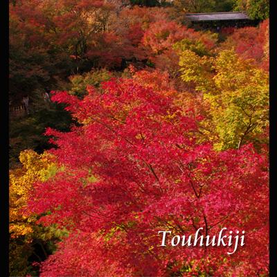東福寺091102
