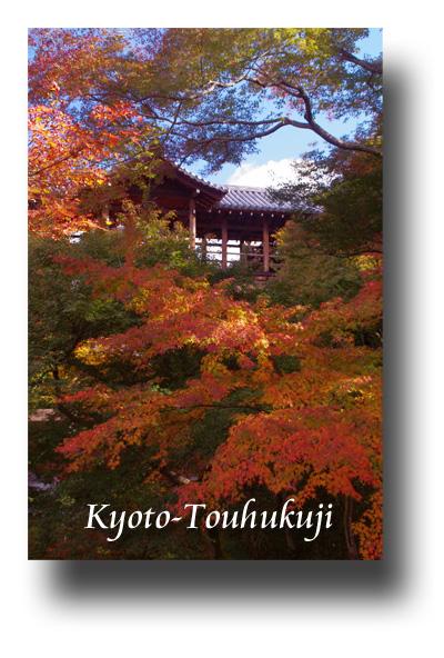 東福寺091104