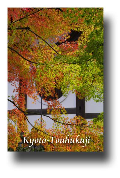 東福寺091105
