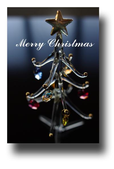 クリスマスカード091205