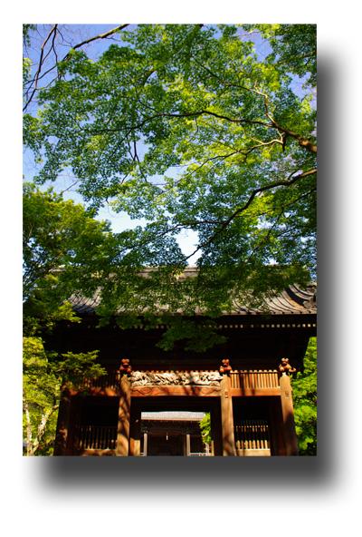 鎌倉100507