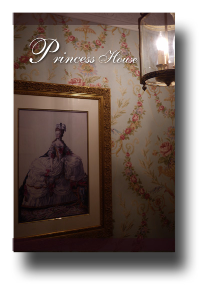 プリンセスハウス100808