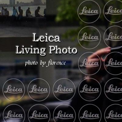 ライカ101102_edited-1