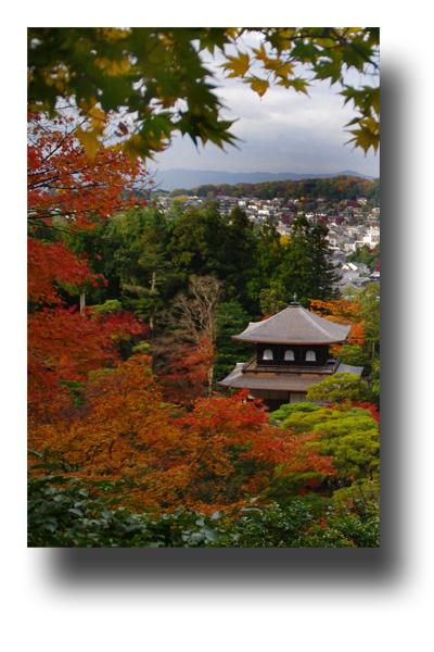 銀閣寺101106_edited-1