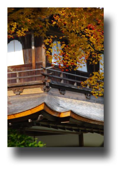 銀閣寺101107_edited-1