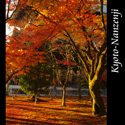 南禅寺101101_edited-1