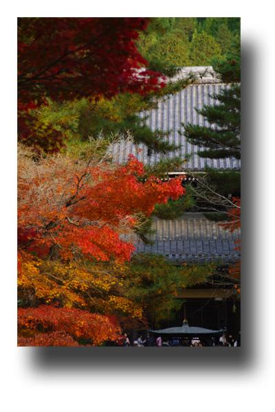 南禅寺101104_edited-1