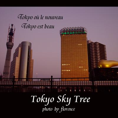 東京スカイツリー110101_edited-1