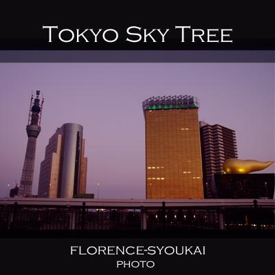 東京スカイツリー110104_edited-1