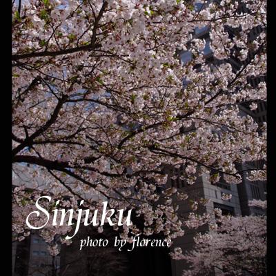 新宿1104012_edited-1