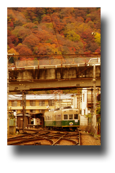 嵐山111203