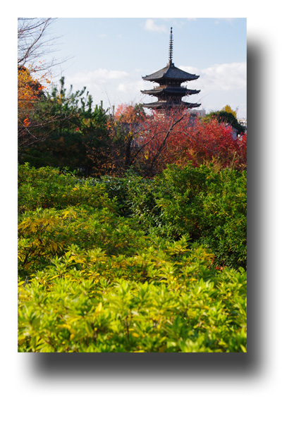京都111206