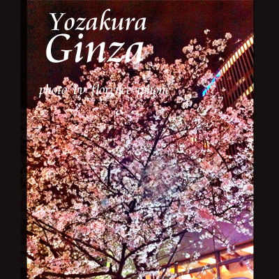 夜桜120301