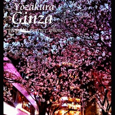 夜桜120302