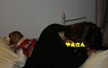 IMG_8211_20081125145833.jpg