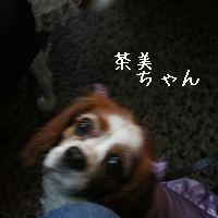 IMG_8488.jpg