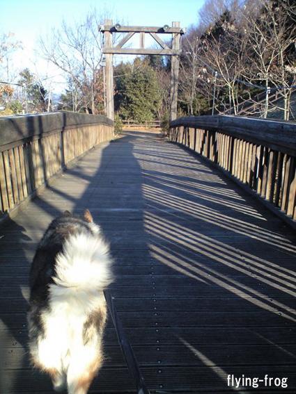 20090101ウェイと橋