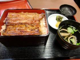 2011新年東京04