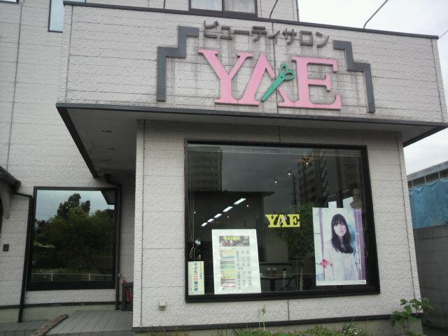 YAE.jpg