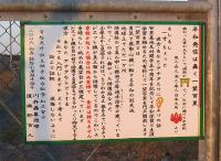 百里基地 平和公園(一望百里の解説)