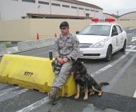 2011年 横田友好祭の警察犬