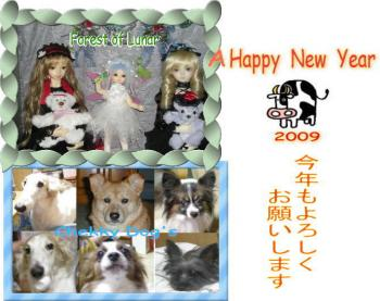 image2009.jpg
