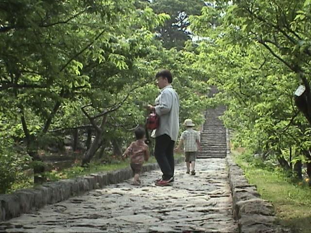 今帰仁 2