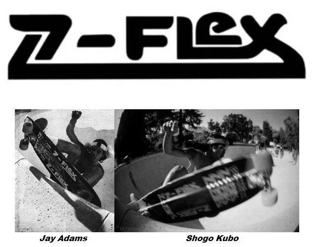 zflex_logo_under_ss[1]2