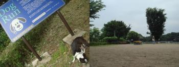 軽井沢へ001-1