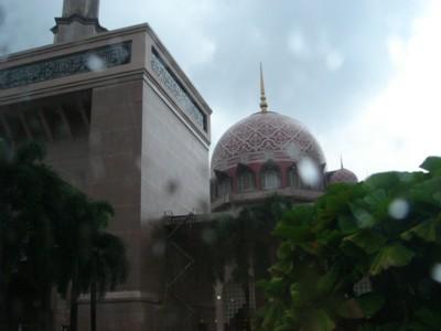 雨のピンクモスク