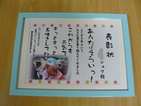 2010 シュワの表彰状