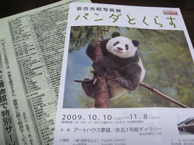 パンダとくらす