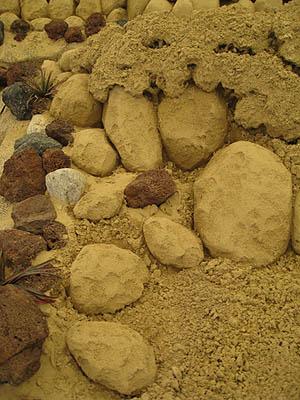 砂の美術館4期4