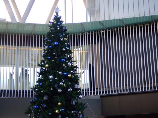 クリスマスツリー101225