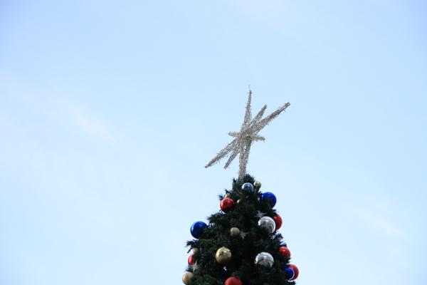 クリスマスツリー111225